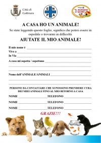 A CASA HO UN ANIMALE!